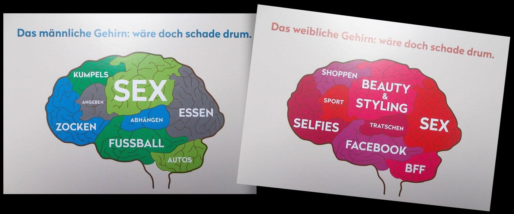 Gehirn-Postkarten (Männer- und Frauen-Gehirne)
